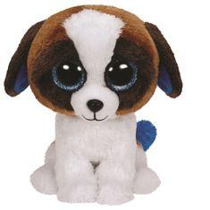 TY DUKE - bielo-hnedý pes 24 cm