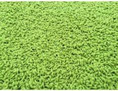 Vopi Kusový koberec Color Shaggy zelený 200x300 cm