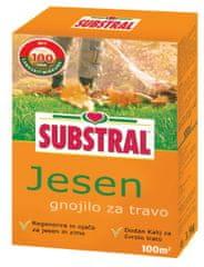 Substral gnojilo za travo Jesen, 2 kg, 100 m2
