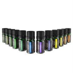 Anjou esencialen set olj 12 x 5 ml