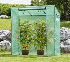 Windhager staklenik za rajčicu, 200 x 195 x 60 cm