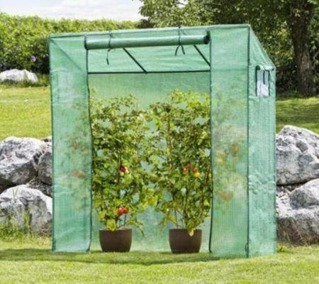 Windhager rastlinjak za paradižnik, 200 x 195 x 60 cm