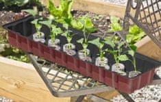 Windhager sobni rastlinjak s 36 šotnimi tabletami, 54,5 x 16,5 x 11 cm