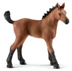 Schleich figurka-koń źrebię Quarter 13854