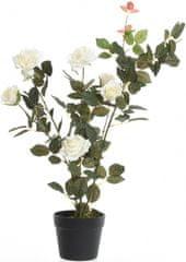 Kaemingk Ružový ker v kvetináči, biely, 80 cm