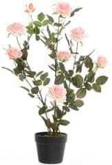 Kaemingk Ružový ker v kvetináči, ružový, 80 cm