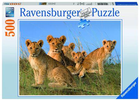 Ravensburger Oroszlánkölykök 500 darabos