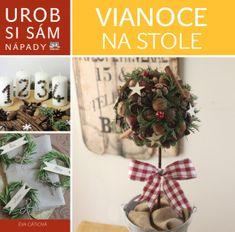 autor neuvedený: Vianoce na stole - Urob si sám