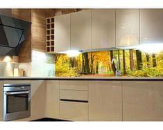 Dimex Fototapeta do kuchyne KI-180-045 Les v jeseni 60 x 180 cm