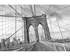 Dimex Fototapeta XL-5510-SK Brooklyn most - čiernobiely 330 x 220 cm