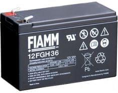 Fiamm akumulator 12FGH36