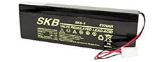 SKB akumulator SK6-4AGM za Beghelli svetila
