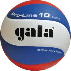 Gala lopta za odbojku PRO-LINE - 10 linija, 5581SA