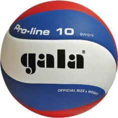 Gala lopta za odbojku PRO-LINE - 10 linija, BV5121SA