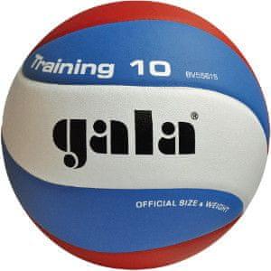 Gala Training labda - 10 panel BV5561SB