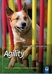 Kolektív autorov: Agility