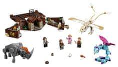 LEGO čarobna stvorenja, Harry Potter (75952)