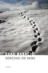 Esad Babačić: Odrezani od neba