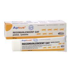 Aptus Reconvalescent Cat pasta 60 g