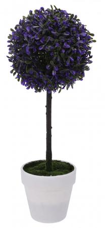Koopman Krušpán na kmeni v bielom kvetináči, 45 cm, purpura