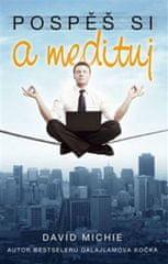 Michie David: Pospěš si a medituj