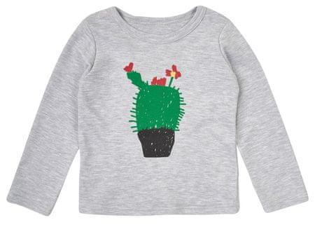 Garnamama koszulka dziecięca z kwitnącym kaktusem 68 szara