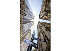 Dimex Fototapeta MS-2-0011 Broadway mrakodrapy 150 x 250 cm