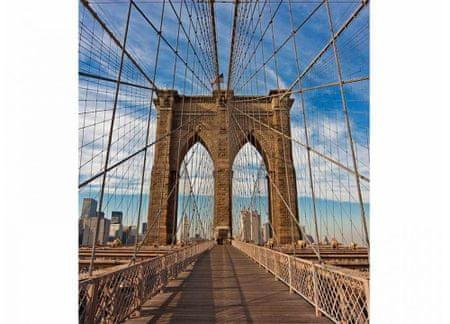 Dimex Fototapeta MS-3-0005 Brooklyn most 225 x 250 cm