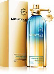 Montale Paris Aoud Lagoon - woda perfumowana