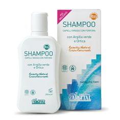 Argital Šampón na mastné vlasy a proti lupinám so žihľavou 250 ml