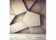 Dimex Fototapeta MS-3-0037 Betónová 3D stena 225 x 250 cm