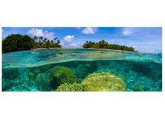 Dimex Fototapeta MP-2-0200 panoráma - Koralový útes 375 x 150 cm