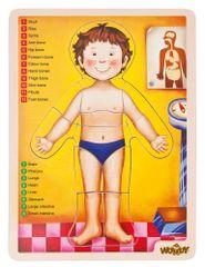 Woody slagalica - tijelo čovjeka AJ