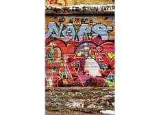 Dimex Fototapeta MS-2-0321 Grafity z ulice 150 x 250 cm