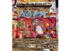 Dimex Fototapeta MS-3-0321 Grafity z ulice 225 x 250 cm