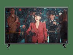 Panasonic 4K UHD televizor 49FX600E - Odprta embalaža