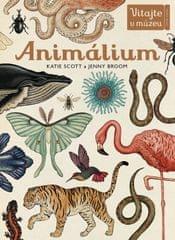 Scott, Jenny Broom Katie: Animálium