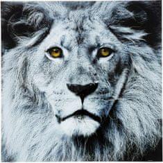 KARE Obraz na skle Face Lion 80x80cm