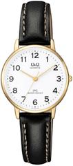 Q&Q Analogové hodinky QZ01J104