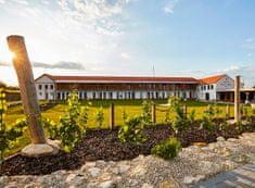 Allegria designový vinařský hotel v Mikulově