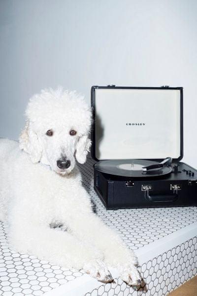 Gramofon Crosley Portfolio desky o velikosti 7 10 12 palců otáčky 33 45 78 mm přenoska
