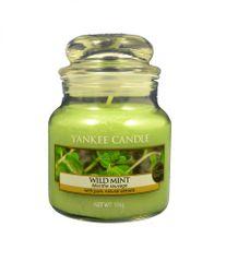 Yankee Candle świeca zapachowa mała Classic 104 g Wild Mint