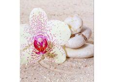 Dimex Fototapeta MS-3-0119 Orchidea v piesku 225 x 250 cm