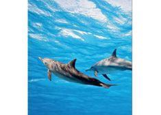 Dimex Fototapeta MS-3-0218 Delfíny 225 x 250 cm