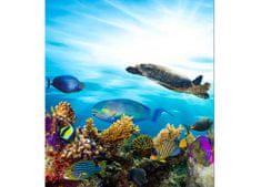 Dimex Fototapeta MS-3-0216 Morské ryby 225 x 250 cm