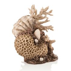 Oase Akváriová dekorácia BiOrb coral-shells ornament natural