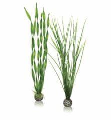 Oase Akváriová dekorácia biOrb Easy plant set L green