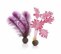 Oase Akváriová dekorácia biOrb Kelp set S pink