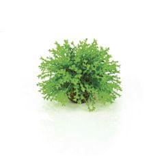 Oase Akváriová dekorácia biOrb Flower ball green