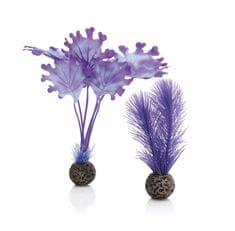 Oase Akváriová dekorácia biOrb Kelp set S purple